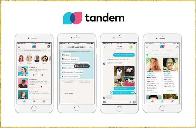 Tandem(言語交換アプリ)レビュー 実際に使用してみた感想