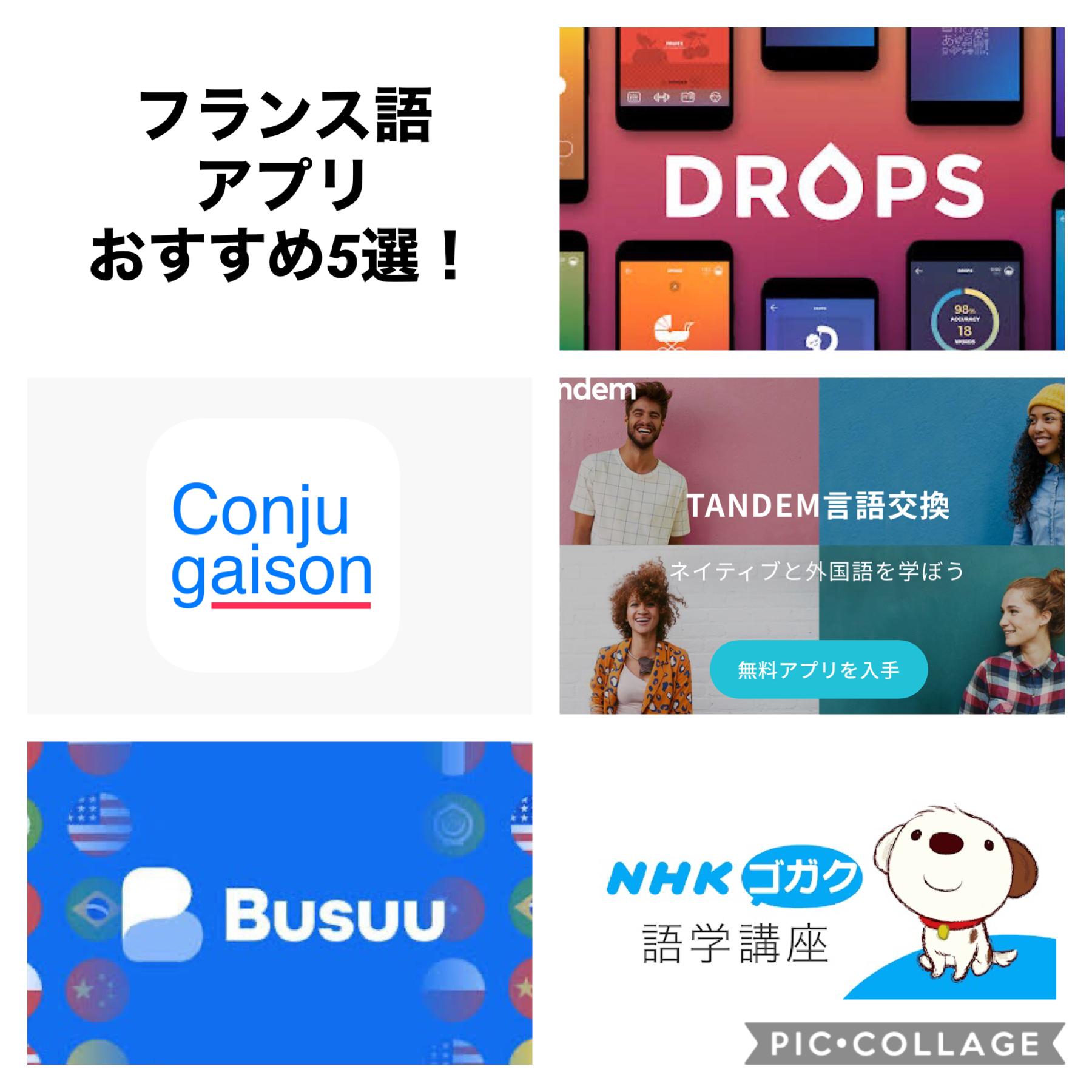 フランス語アプリ おススメ5選!