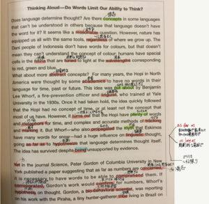 実際の英文精読方法